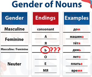 gender of nouns is russian